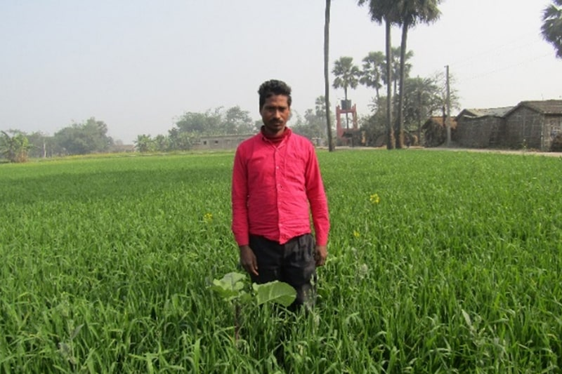 NUTRITION AND CROP PROTECTION DEMONSTRATION: PADDY