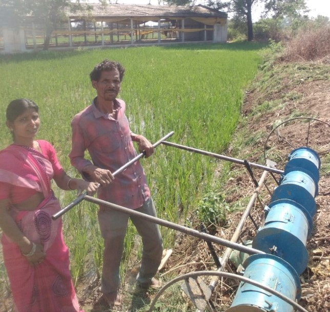 Cultivation using paddy drum seeder