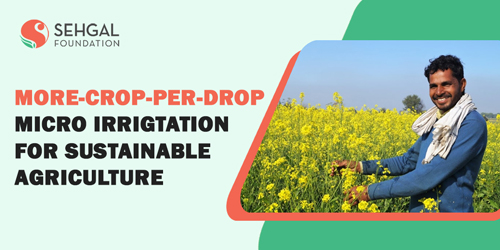 Micro- irrigation for agriculture and sustainable development