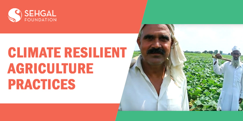 climate-resilient-agriculture-practices